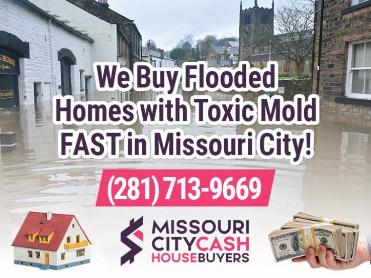 missouri city water damage and mold